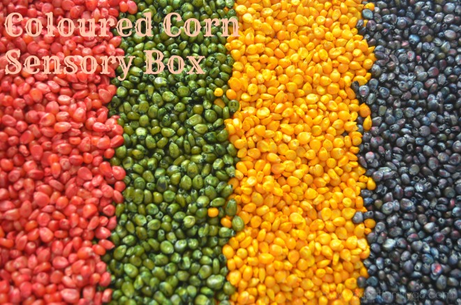 coloured corn